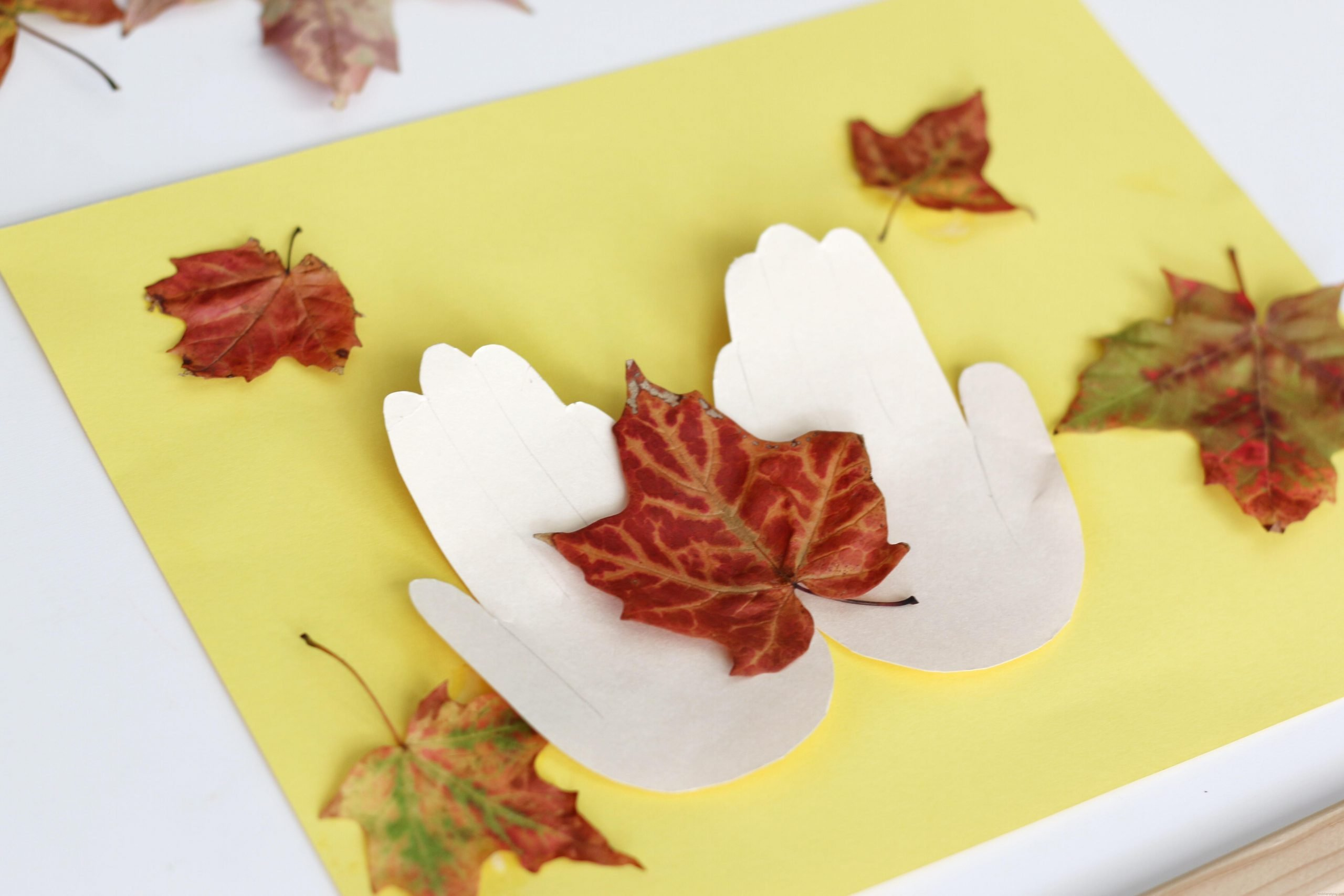 Hold a Fall Leaf Fall Craft