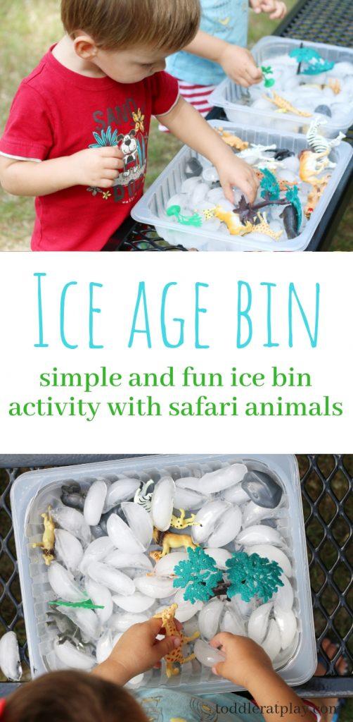 ice age bin