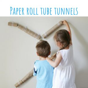 paper roll tube tunnels