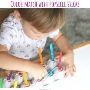 color match (7)- toddler at play