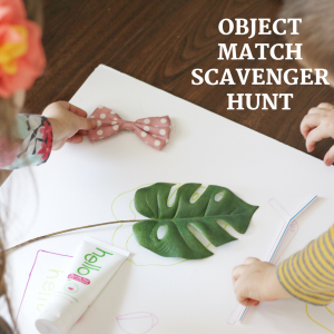 object match scavenger hunt (5)