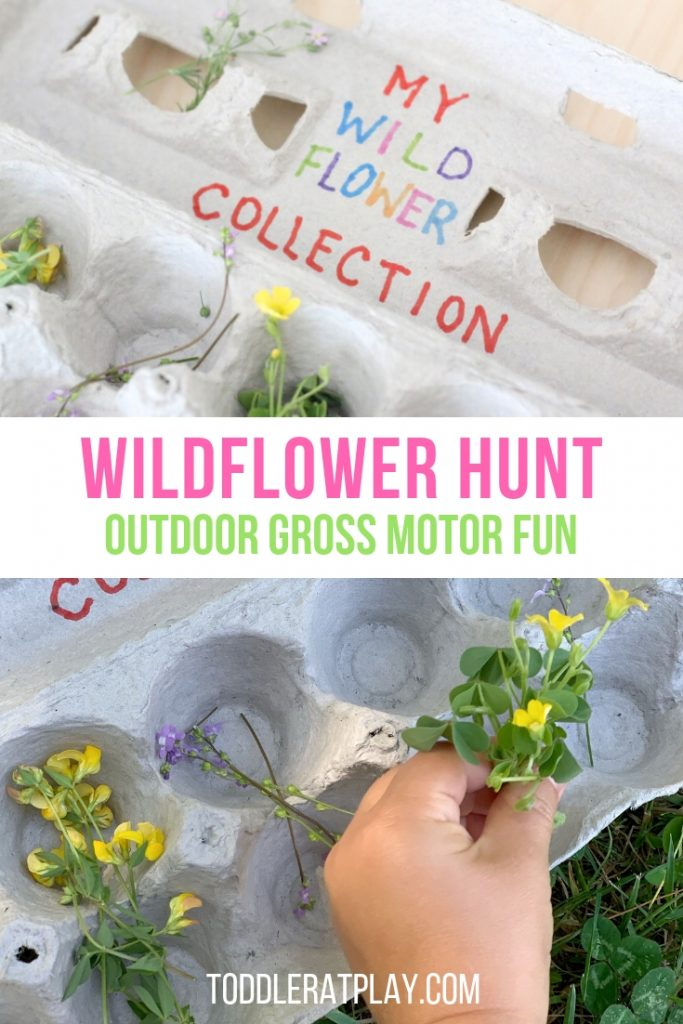 wildflower hunt- toddler at play (6)