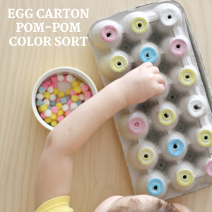 egg carton pom-pom color sort (4)