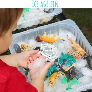 ice age bin (7)