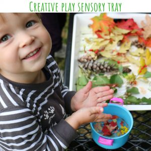 creative play tray (11)