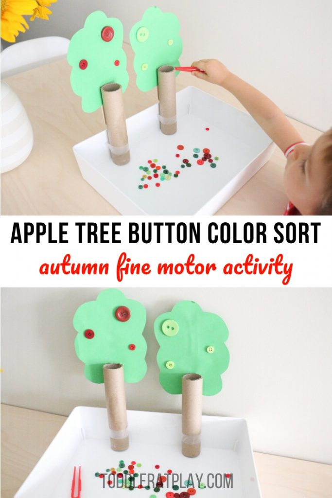 apple tree button color sort- toddler at play (7)