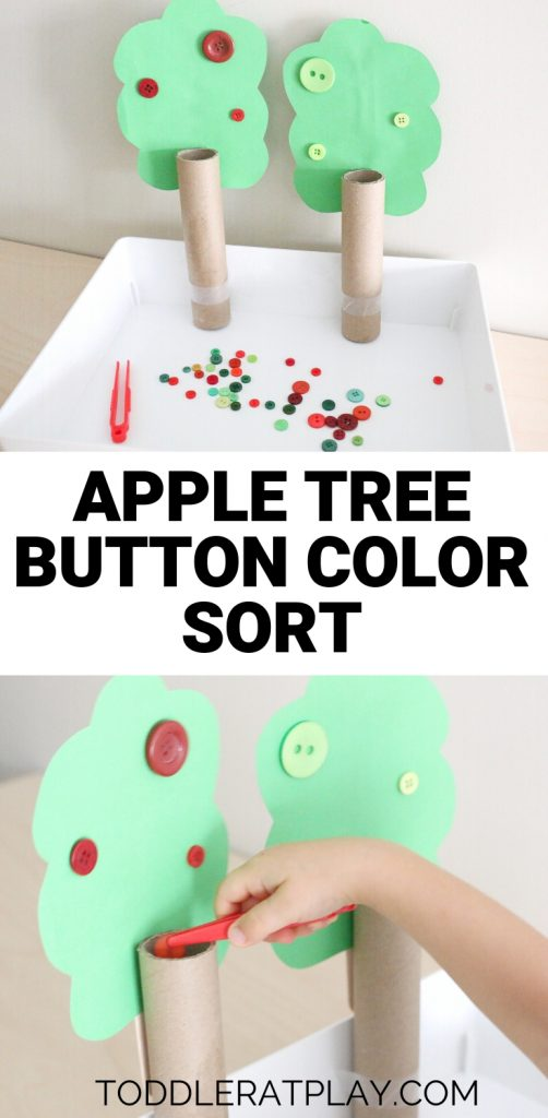 apple tree button color sort- toddler at play (8)