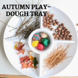 autumn play-dough invitation to create- toddler at play (3)