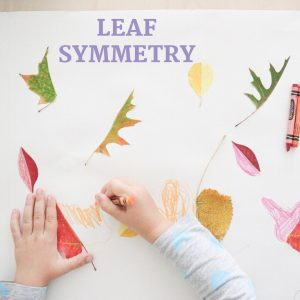leaf symmetry- toddler at play (9)