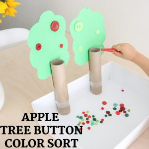 apple tree button color sort- toddler at play (11)