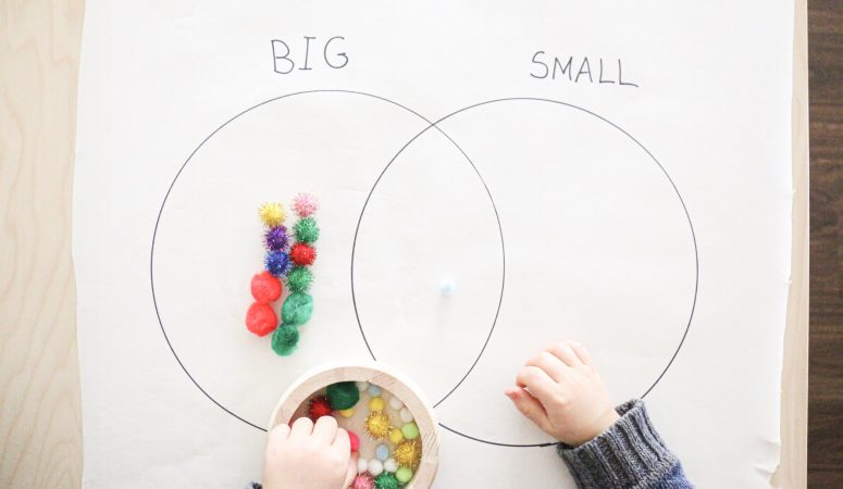 Sorting Pom-poms by Size Activity