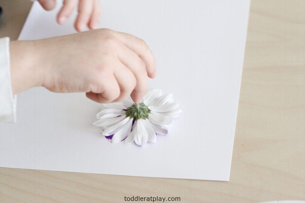 flower stamp art- toddler at play (1)