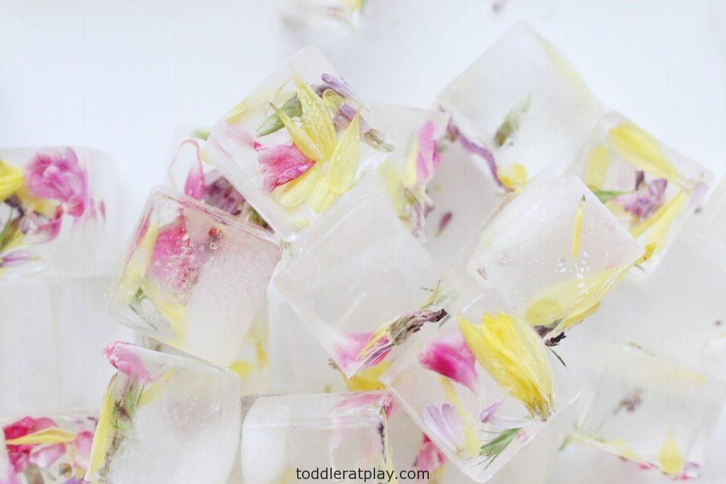 water painting flower ice cubes- toddler at play (10)